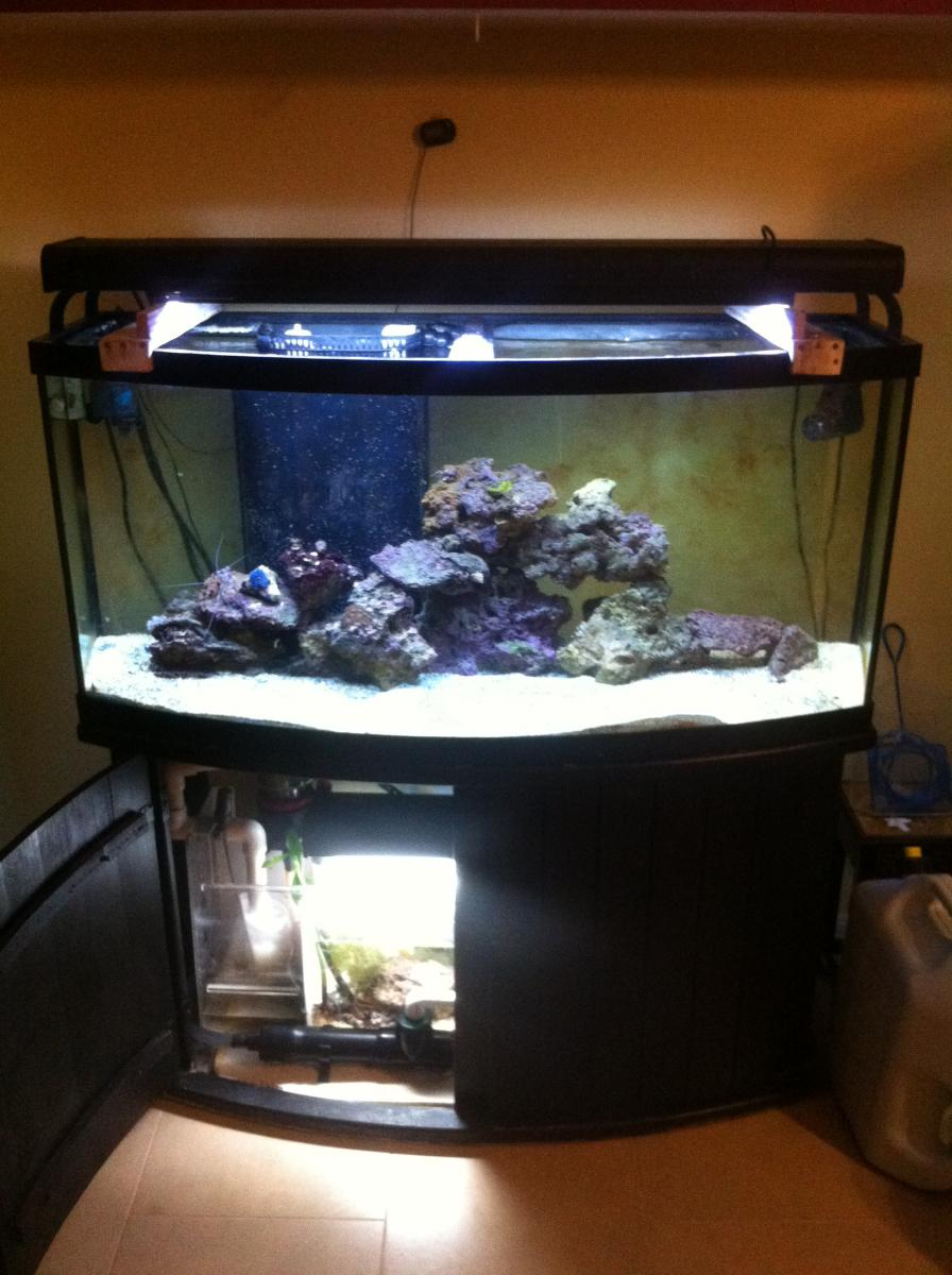 wrenchedup's tank 72gal bow