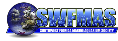 SouthWest Florida Marine Aquarium Society