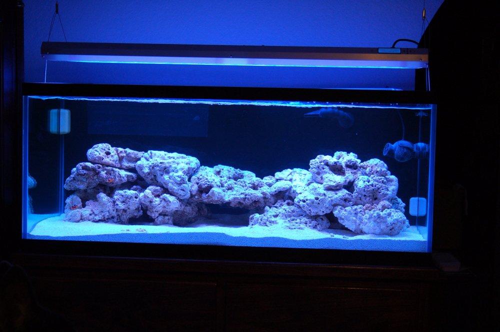 Tank:Light.jpg