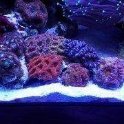 FishinBob